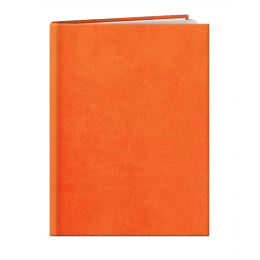 Agenda de poche INA10 LONDRES ORANGE A858