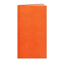 Agenda de poche INA18 LONDRES ORANGE A858