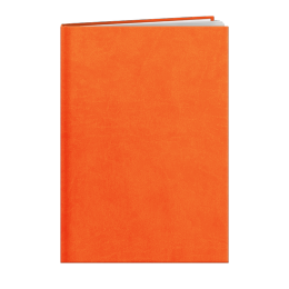 Agenda de bureau INA24 LONDRES ORANGE A858