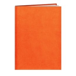 Agenda de bureau INA27 LONDRES ORANGE A858